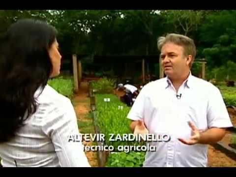 Globo Repórter - Plantas medicinais ajudam a emagrecer e a curar a depressão