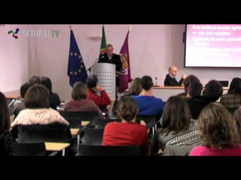 Tertúlia: Crise - Oportunidade de Transição