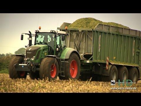 Claas Jaguar 990 + Krone Big X 700 + Fendt Traktoren beim Maishäckseln für 4MW BGA