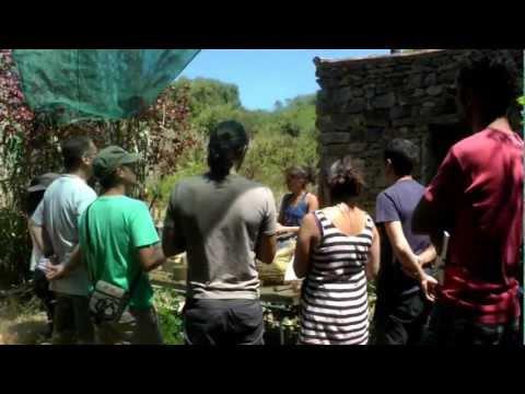 A Quinta do Luzio em Sintra!