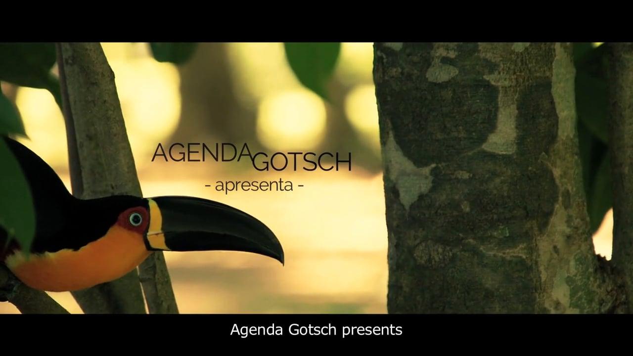Agenda Gotsch apresenta Agrofloresta em Grande Escala - Fazenda da Toca