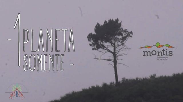 1 PLANETA SOMENTE by rezpect [Montis]