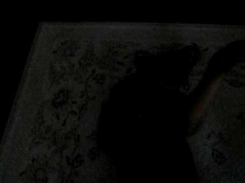 Picture 056.avi