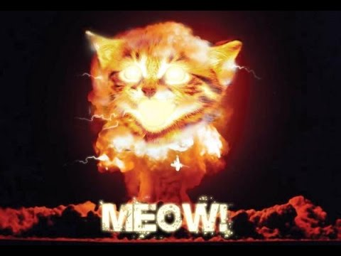 The End of the world, any day now: MEOW