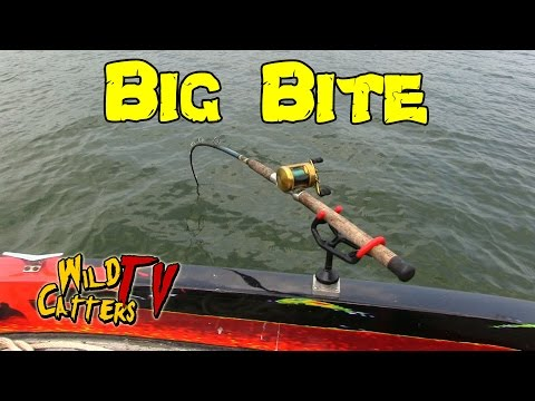 Ohio River Action: Fishing for Blue catfish around mussel beds