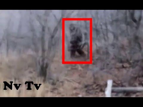 RUNNING SCARED!! MASSIVE BIGFOOT ENCOUNTER!! - Provo Canyon, USA (2012) - HD