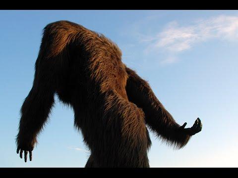 Bigfoot & Sasquatch Encounters Across America & The Continent