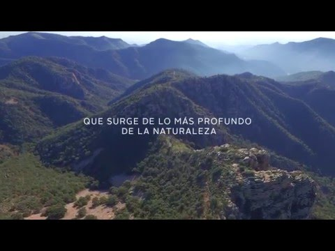 Trailer 2015 Mar de Fulles