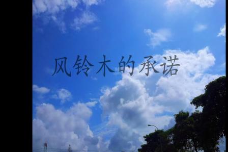Agnes Chong: 風鈴木的承諾