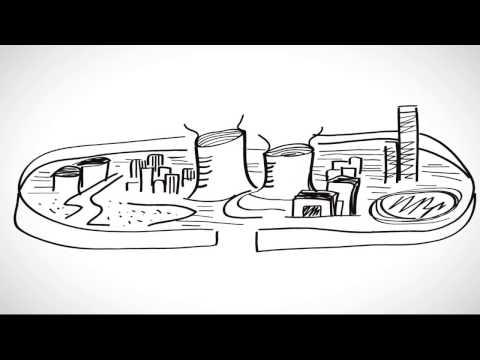 SHS跨科際 - 跨科際動畫-跨科際&專業:用多元專業觀點透視複雜議題