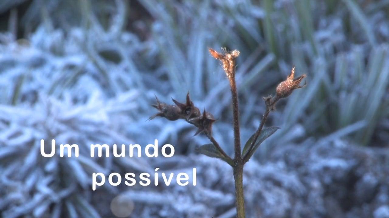 Um mundo possível
