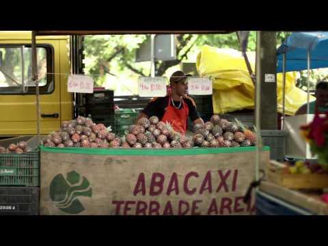 Você sabe de onde vêm seus alimentos? - Do you know where your food comes from?