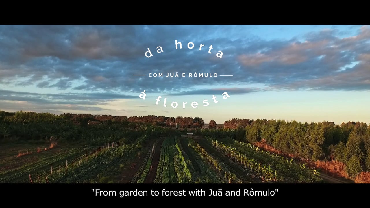 Da horta à floresta - From garden to forest