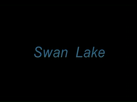 Swan Lake - P