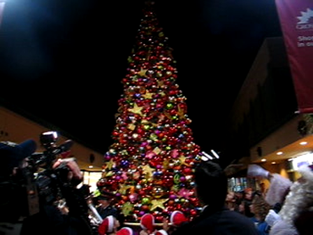 Christmas Tree Lighting 2011
