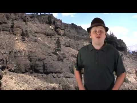 AS: Petrified Forests Explained