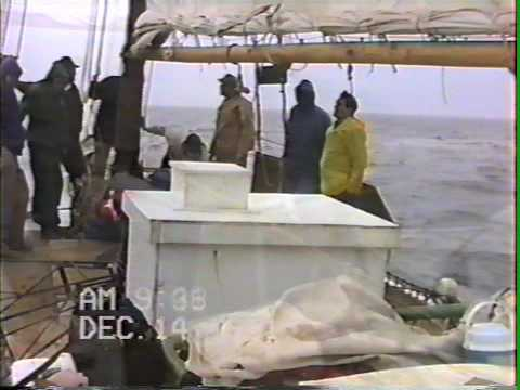 Dredging Oysters on the  Skipjack Ida May:  12/14/1991 Part 1