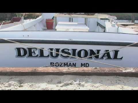 At Scott's Cove: 12/4/10 Delusional