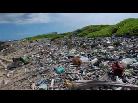 VP004: Tapped (Trailer)