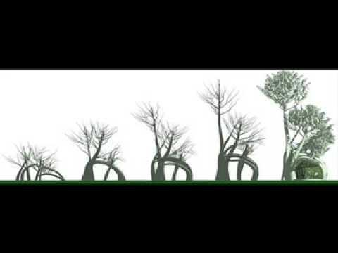 Living Treehouse