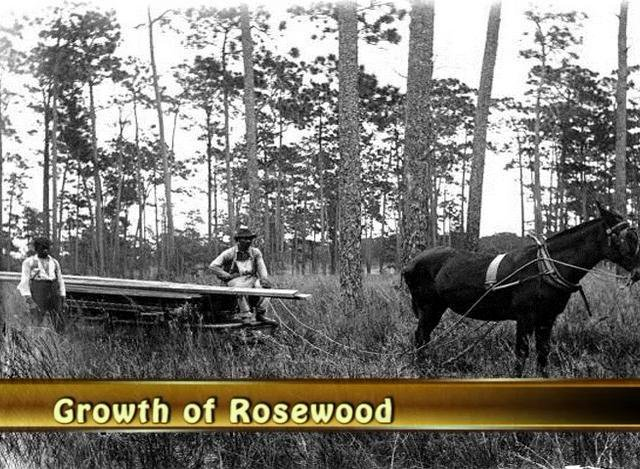 Remembering Rosewood - Digital Storytelling Video