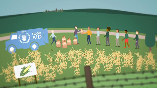 UN Forum 2012: food security and sustainability