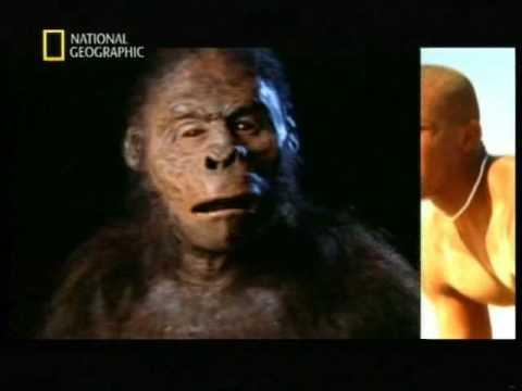 El origen del hombre - National Geographic - Español parte 1 de 5