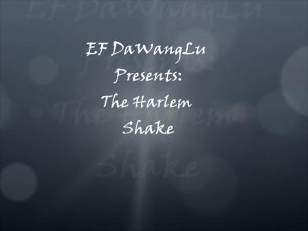 DaWangLu Harlem Shake