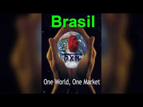 DXN Brasil a Punto de empezar a escribir su Historia