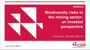 Biodiversity risks in the mining sector: an investor perspective
