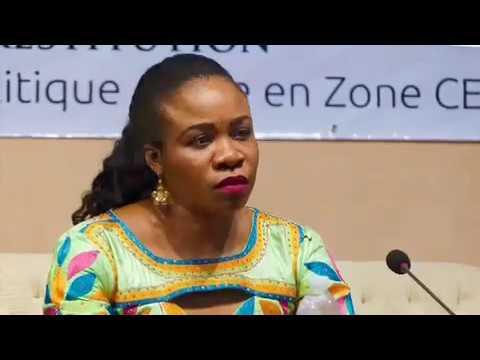 GIZ / REMAP-CEMAC Entwicklung von gemeinschaftlichen Politiken