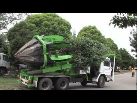 stroj na presádzanie stromov