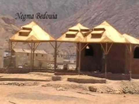 Negma Bedouia Experience Bedioun hospitality. http://negmabedouia.mfbiz.com