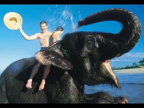 FUN TRIP TO SRI LANKA!