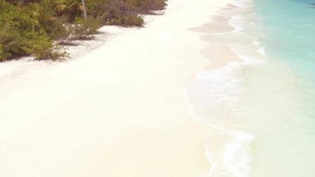 Beaches Resort Jamaica