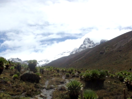 Trekking trips Kenya, climbing mount Kenya, climbing Mount Kenya in Kenya,YHA KENYA TRAVEL