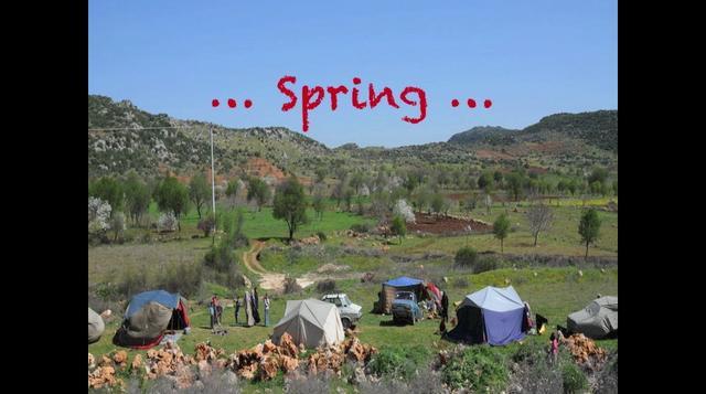 Free Spirits of the World: Nomadic  Gypsies