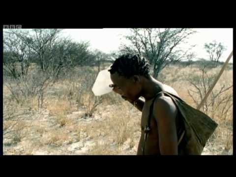 Human Mammal, Human Hunter - Attenborough -  Life of Mammals - BBC