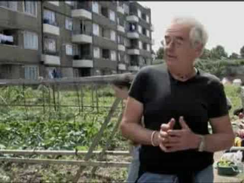 ABUNDANCE: Urban agriculture in Brixton, London