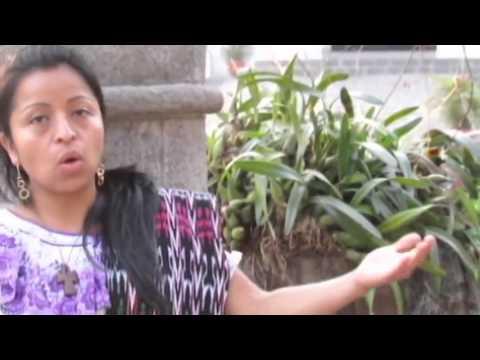 Esperanza del Amanecer - Himno de la JMJ Rio 2013 en español - Versión de Guatemala