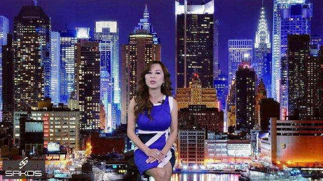 Sakos International Vietnamese