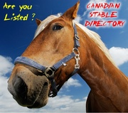 Canadian Stable Directory
