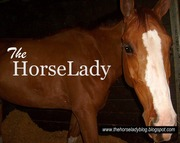 The HorseLady Blog