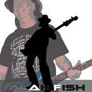 Alan Fish