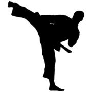 Karate Lady
