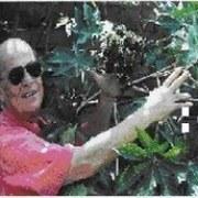 JOSE MIGUEL PILONIETA PINZON