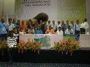 Corporacion Caribe del Aguacate