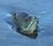 bigpanfish