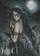 Amber Willow Raven