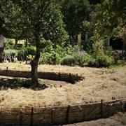 AGROECOLOGIA - WAKESEED